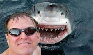 selfie con un tiburón blanco